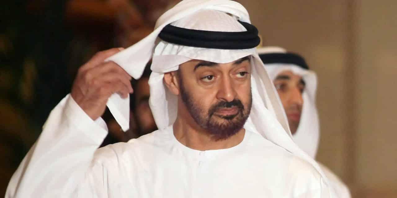 خاص.. الاحتلال الإماراتي