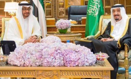 ويكيليكس يكشف نظرة بن زايد للعائلة السعودية الحاكمة