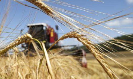 روسيا ترسل 60 ألف طن من القمح للسعودية!