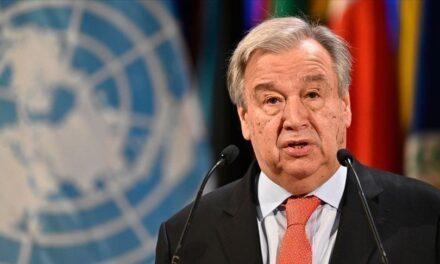 الأمم المتحدة: السعودية لا تزال تمارس القمع ضد المعارضين
